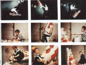 What Social Engineers Can Learn from the Bobo Doll